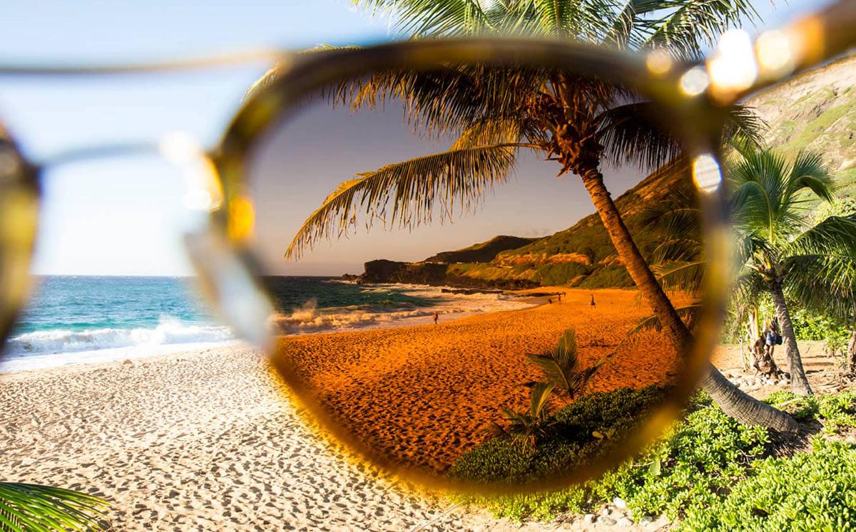 Specs-Appeal-Optical-Miami-Maui-Jim-2